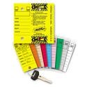 #200 Genuine Versa-Tags Key Tags (250)